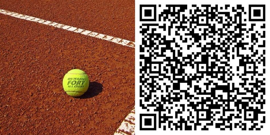 tennisbal-dunlop-qr-comp.jpg