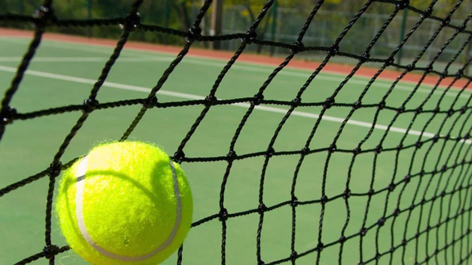 Tennisbal en net.jpg