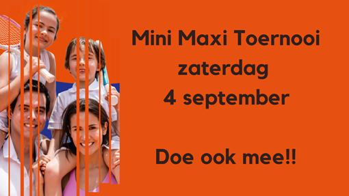 Mini Maxi toernooi afbeelding website.png