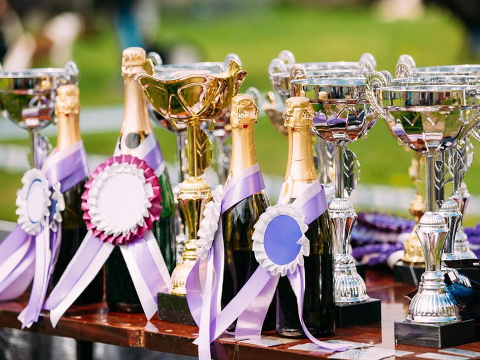 cups sports-m800.jpg