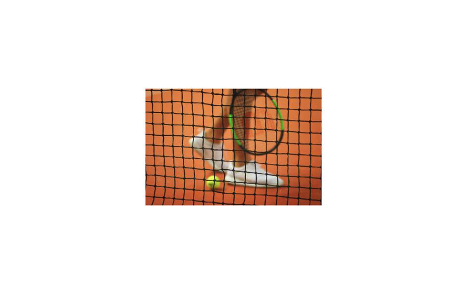 tennisser en net.png