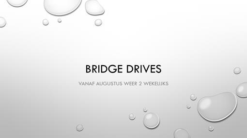 Bridge drives.jpg