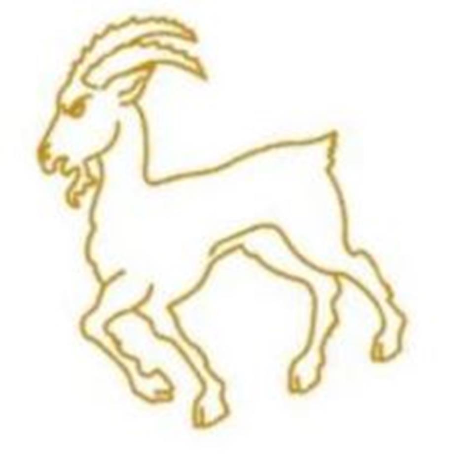 Bokkentoernooi 2021 Logo.jpg