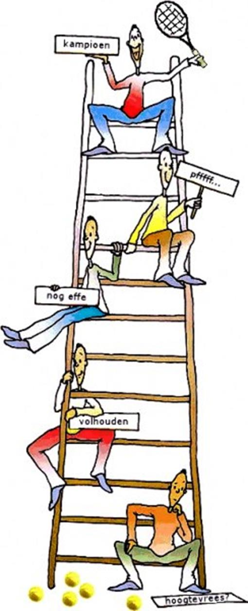 WTV ladder.jpg