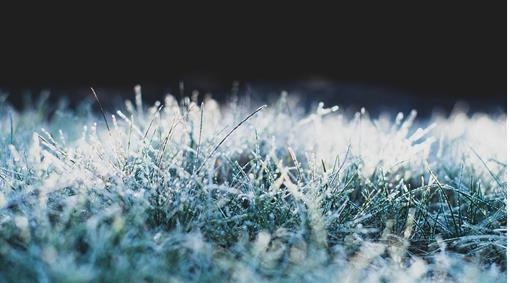 frost-4740180_1024.jpg