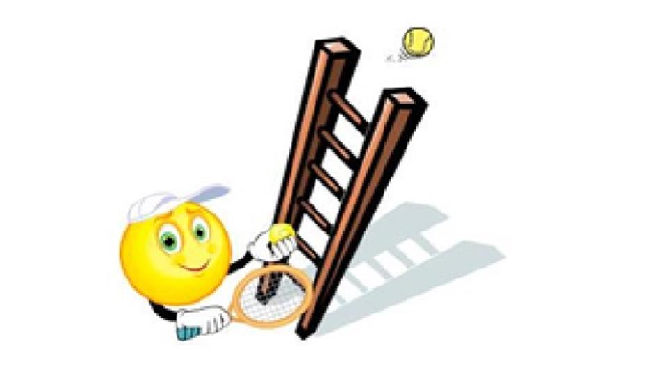 ladder competitie.jpg