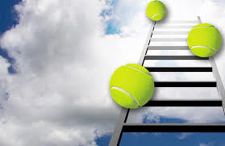 tennisladder2.jpg
