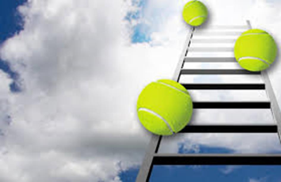 tennisladder2.jpg